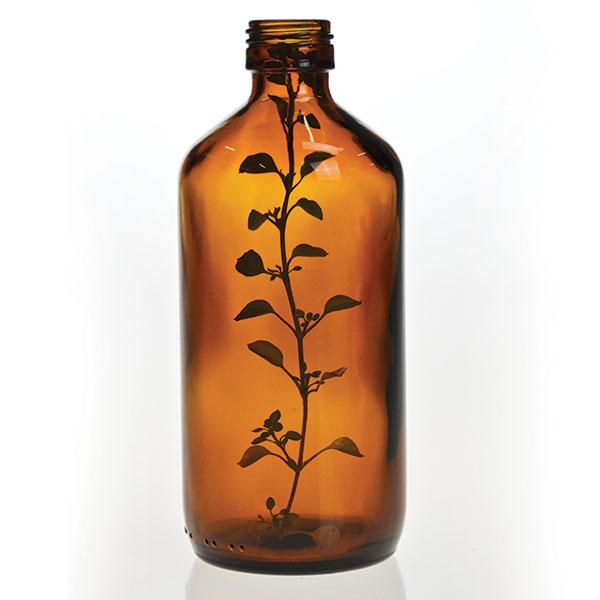 banstead organic salon reigate